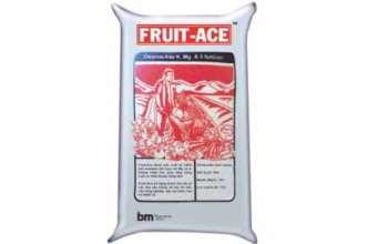 bo-san-phabo-san-pham-fruit-ace